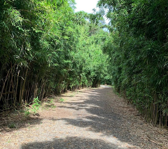 lulumahu falls directions