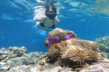 best snorkeling spots in oahu