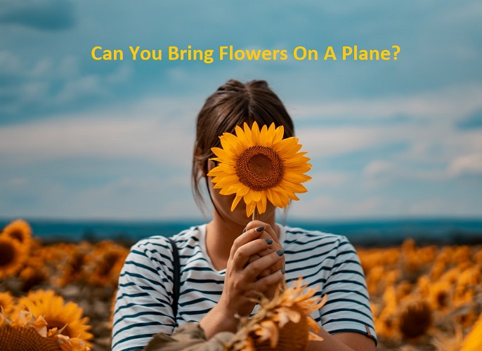 Can You Bring Flowers On A Plane