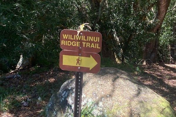 Wiliwilinui ridge trail directions