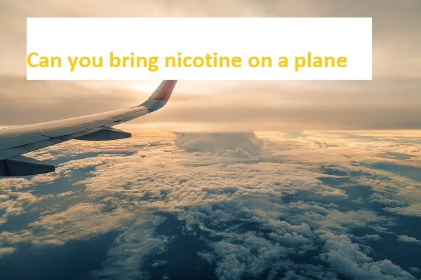 Can you bring nicotine on a plane